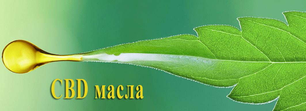 CBD масла и их свойства