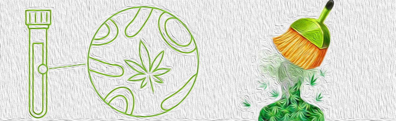 Как избавиться от следов марихуаны в крови рецепт приготовления конопли